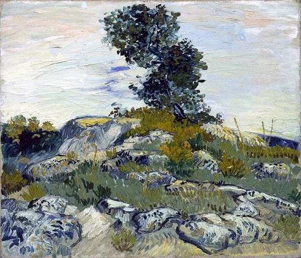 岩とオーク   Vincent Van Gogh