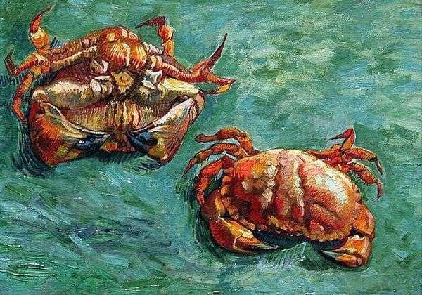 Two Crab   ヴィンセントヴァンゴッホ