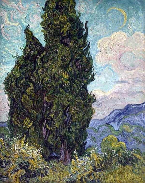 ヒノキの木   Vincent Van Gogh