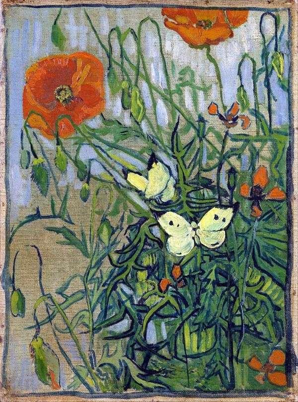 ポピーと蝶   Vincent Van Gogh