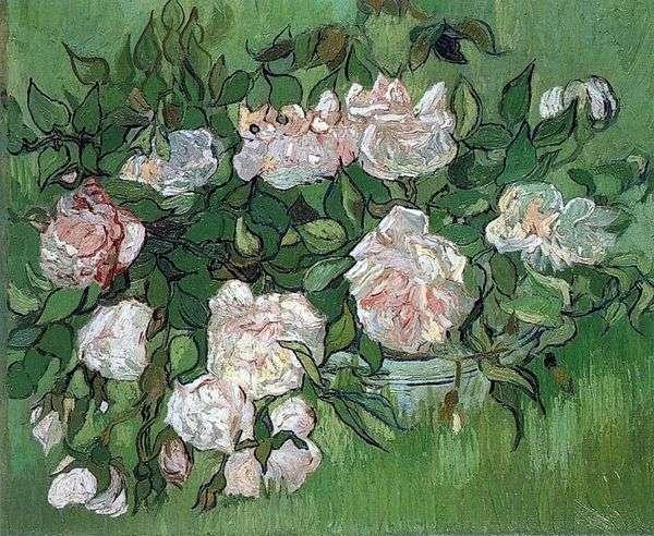 静物:ピンクのバラ   Vincent Van Gogh