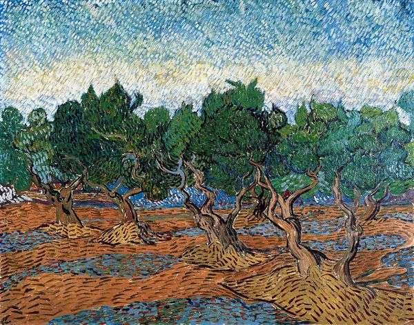 オリーブグローブIV   Vincent Van Gogh