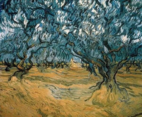 オリーブの木   Vincent Van Gogh