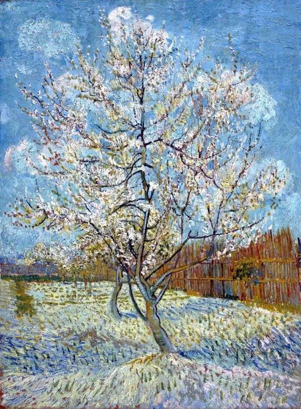 桃の木の花   Vincent Van Gogh