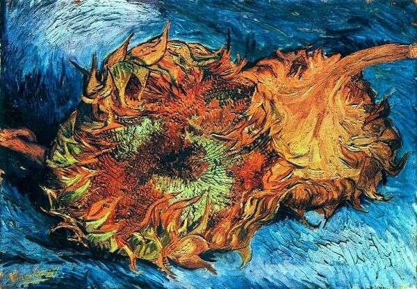 ひまわり 2つのカットひまわり   Vincent Van Gogh