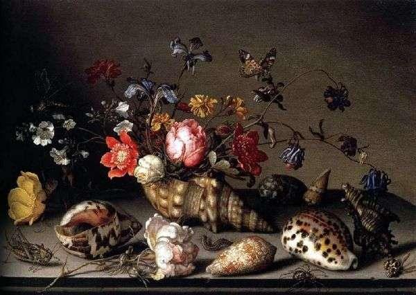 静物:花、殻、そして昆虫   Balthazar van der Ast