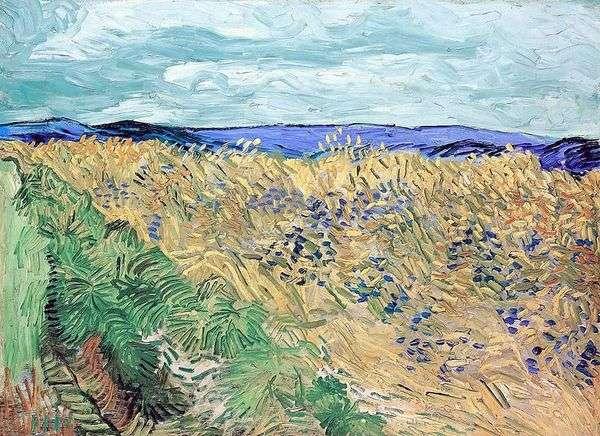 ヤグルマギクと麦畑   Vincent Van Gogh