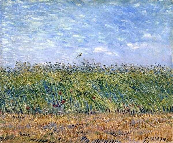 ヒラメの小麦畑   Vincent Van Gogh