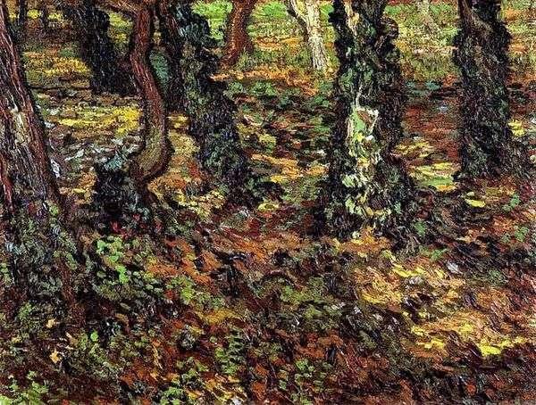 アイビーと木の幹   Vincent Van Gogh