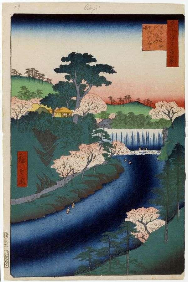 王子の音無川のダム