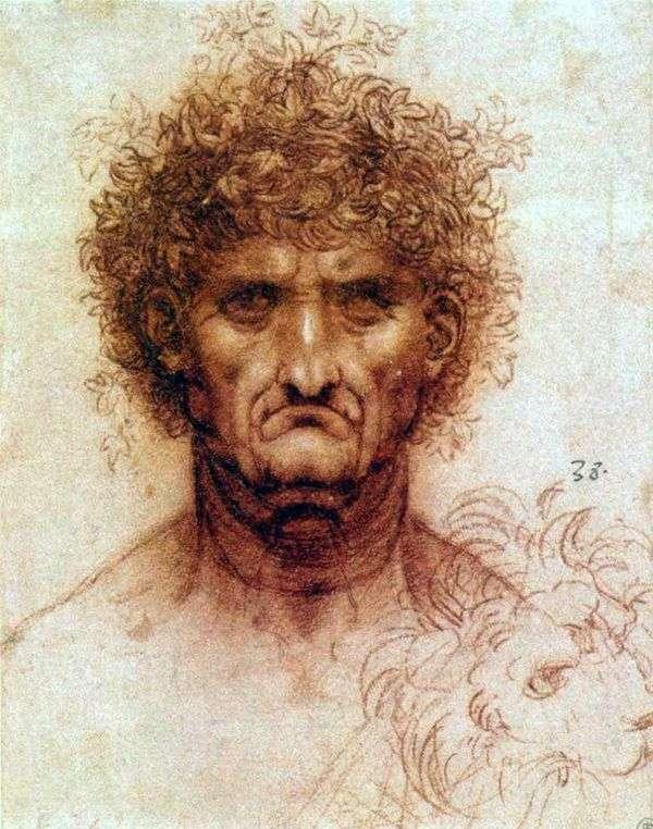 人とライオンの頭   Leonardo da Vinci