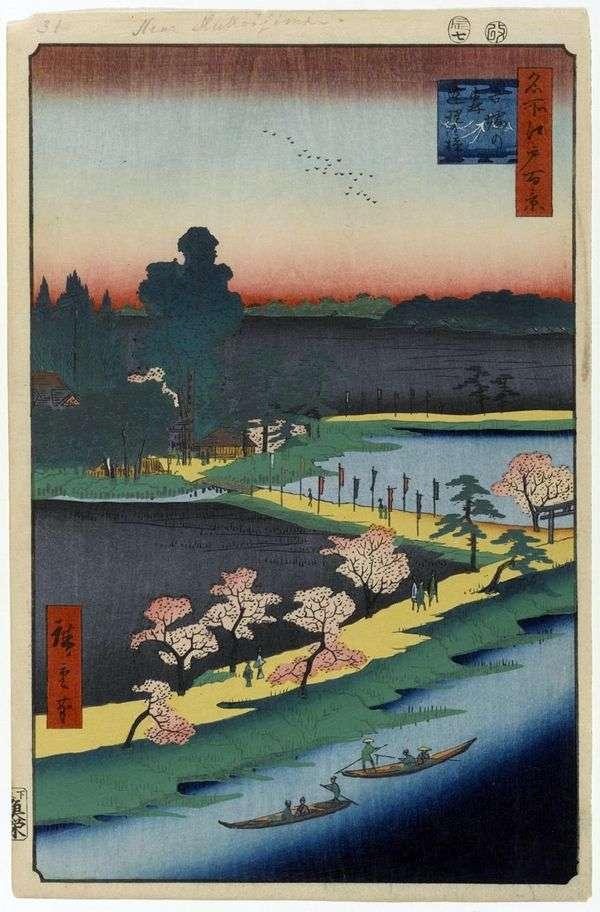 吾妻の森神社の樟脳
