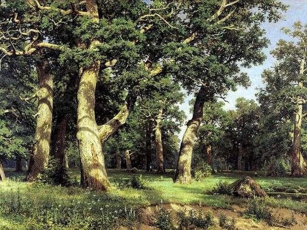 Oak Grove   Ivan Shishkin