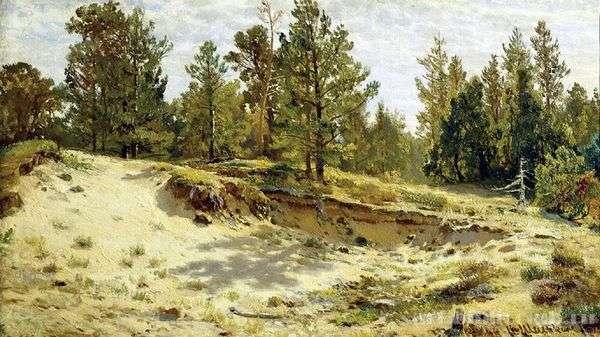 砂浜の崖の上の若い松。フィンランド鉄道のメリコレア   Ivan Shishkin