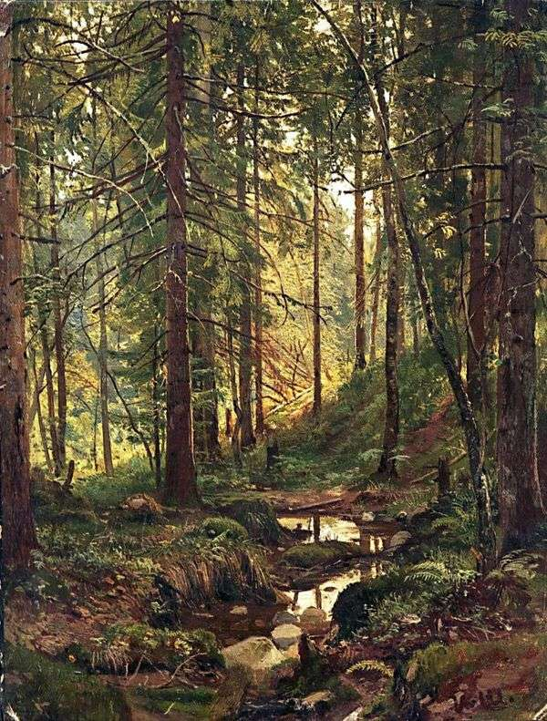 森の中を流れます。Siverskaya   Ivan Shishkin