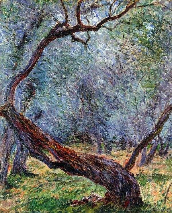 オリーブの木スタジオ   Claude Monet