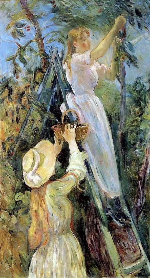 スウィートチェリー   Bertha Morisot