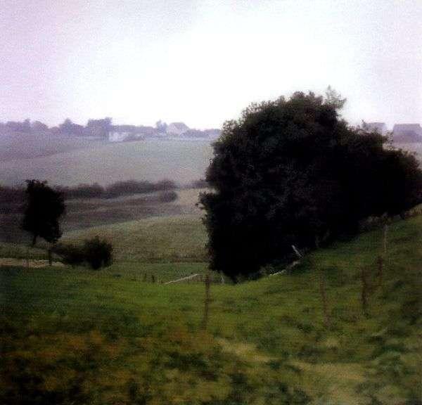 国の牧草地   Gerhard Richter